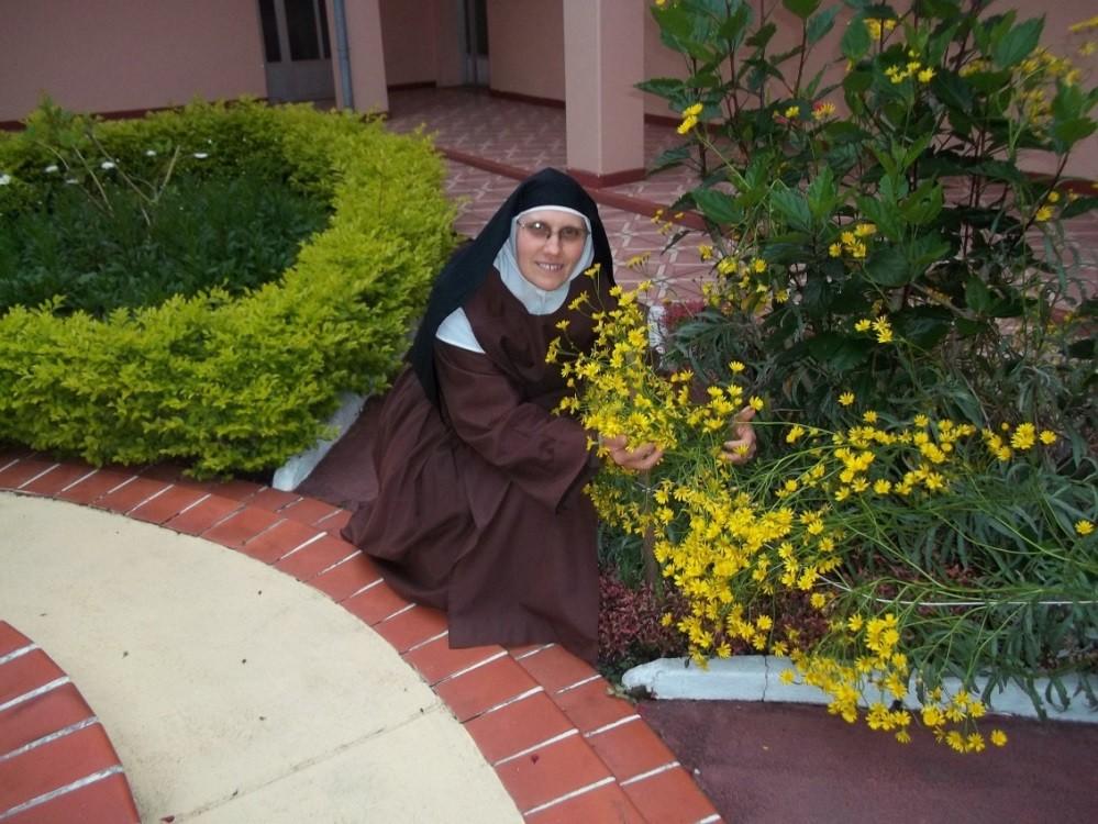 Ir. M Teresa